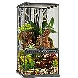Exo Terra Terrarium aus Glas, mit einzigartiger Front Belüftung, 30 x 30 x 60cm, auch als Paludarium nutzbar
