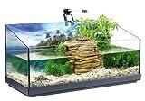 Tetra Repto Aqua Set - Komplettset für Wasserschildkröten mit Innenfilter, Heizer, LED-Beleuchtung und Deko-Insel mit integriertem Futterplatz, ideal zur Aufzucht von Baby- und jungen Schildkröten