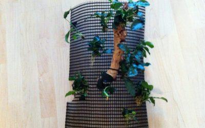Unliebsame Technik ohne viel Aufhebens hinter Pflanzen und Hölzer verstecken