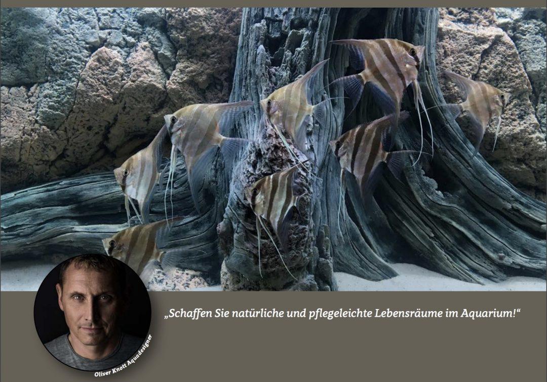 """Neuer deutscher Webauftritt des schwedischen """"Back to Nature"""" Unternehmens"""