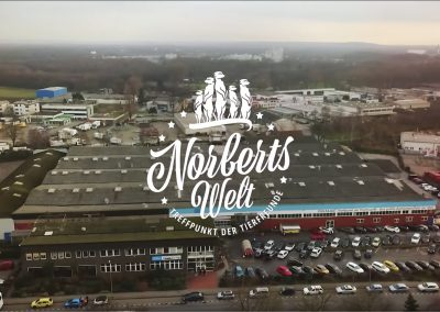So ein Sensibelchen! Der Diskus in Norberts Welt (Video)