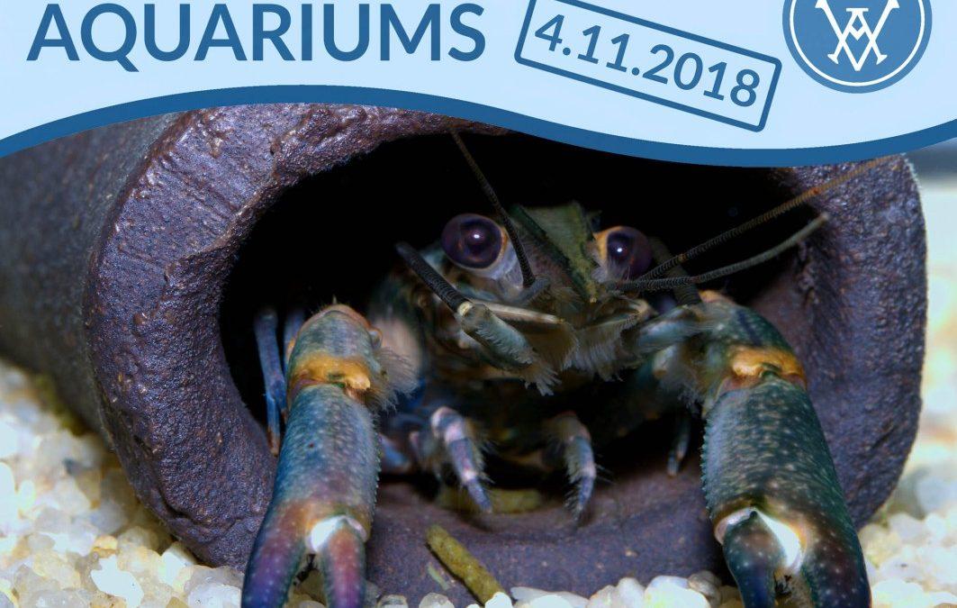 """Alle Jahre wieder! Der VDA ruft auch 2018 zum """"Tag des öffentlichen Aquariums"""" auf"""