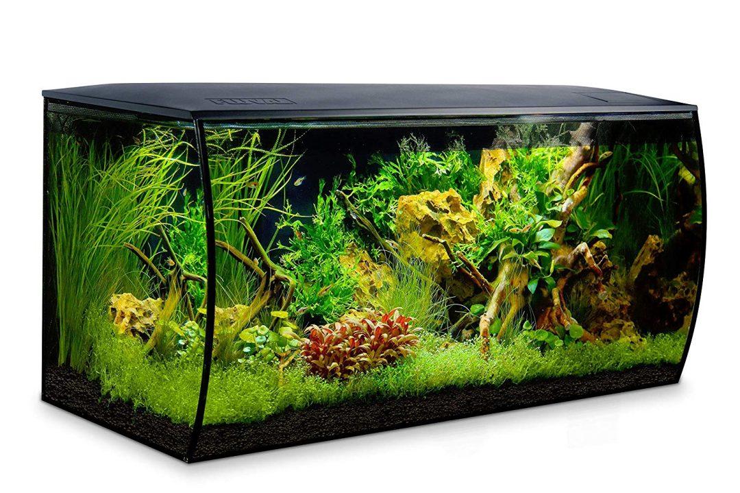 """Das beliebte Aquarium Set """"Fluval Flex"""" gibt es jetzt auch mit 123 Liter"""